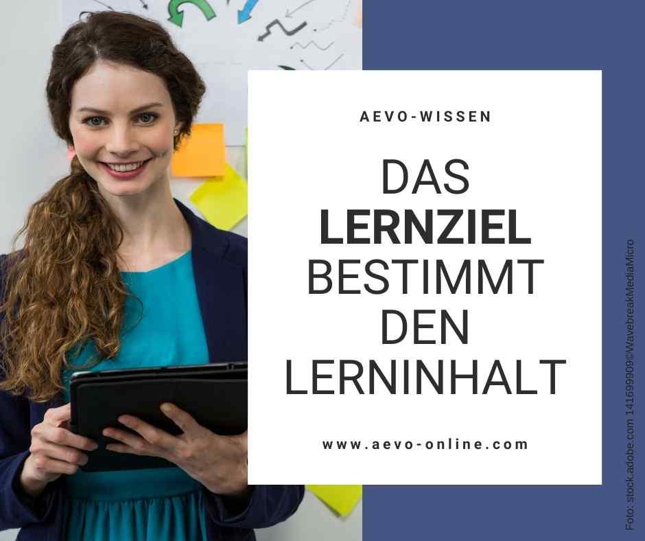 Abbildung: Frau mit Laptop