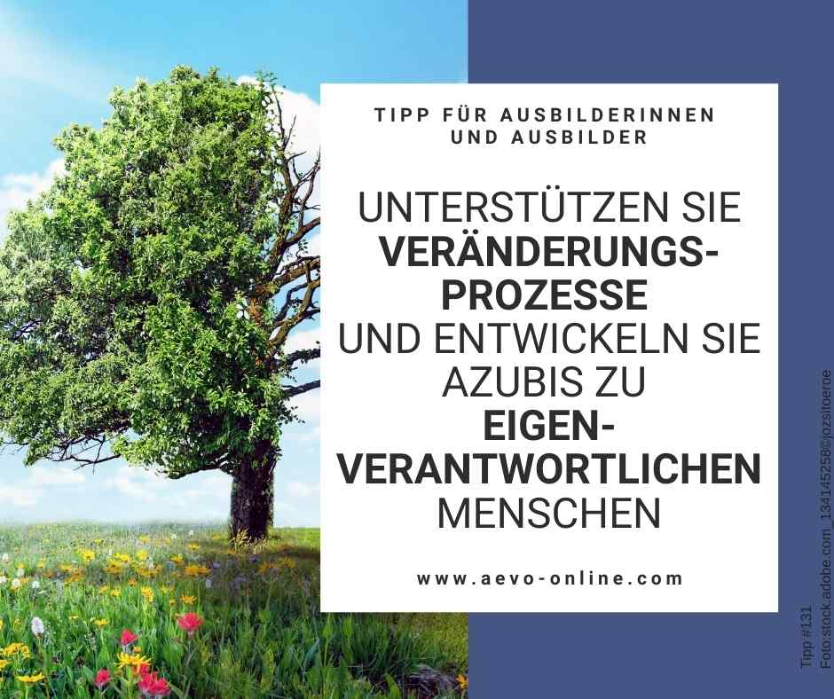Abbildung: Baum mit Jahreszeiten